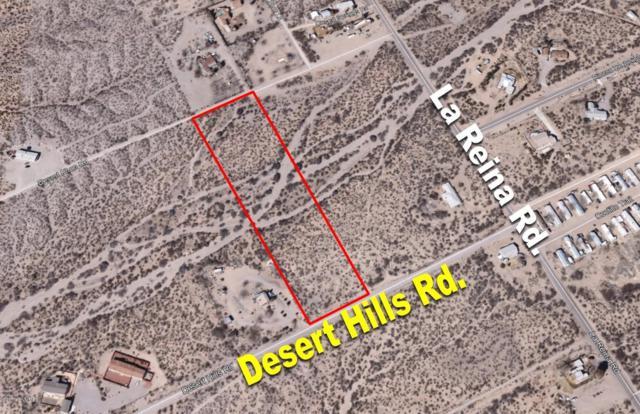 1485 Desert Hills Road, Las Cruces, NM 88012 (MLS #1900251) :: Steinborn & Associates Real Estate