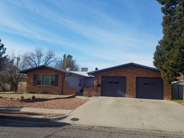 2245 Rosedale Drive, Las Cruces, NM 88005 (MLS #1900253) :: Steinborn & Associates Real Estate