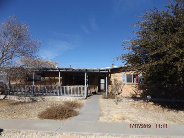 2740 Topley Avenue, Las Cruces, NM 88005 (MLS #1900276) :: Steinborn & Associates Real Estate