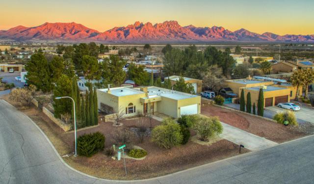 5632 Boxwood Lane, Las Cruces, NM 88012 (MLS #1900281) :: Steinborn & Associates Real Estate