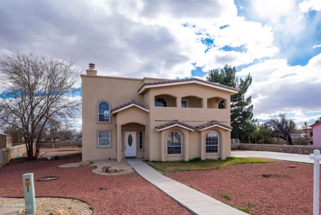 3809 Stoney Brook Circle, Las Cruces, NM 88005 (MLS #1900292) :: Steinborn & Associates Real Estate