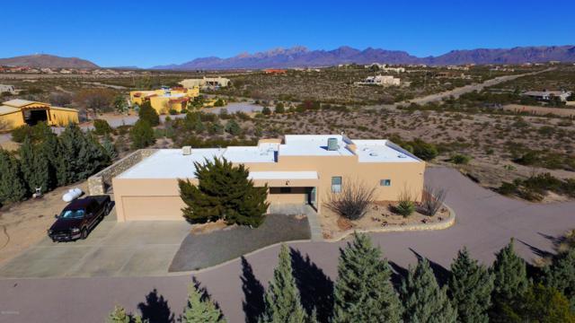 5520 George Catlin Road, Las Cruces, NM 88011 (MLS #1900301) :: Steinborn & Associates Real Estate
