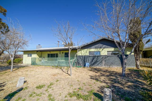 126 Ridgecrest Street, Las Cruces, NM 88005 (MLS #1900328) :: Steinborn & Associates Real Estate