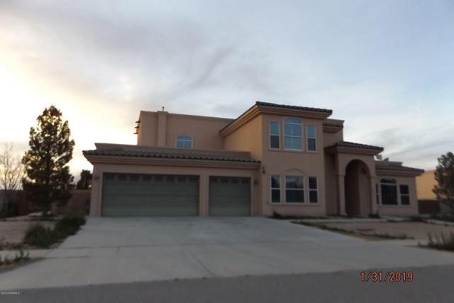 1233 Big Bend Loop, Anthony, NM 88021 (MLS #1900338) :: Steinborn & Associates Real Estate