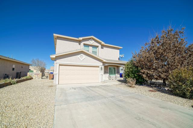 5531 Kalahari Lane, Las Cruces, NM 88011 (MLS #1900348) :: Steinborn & Associates Real Estate