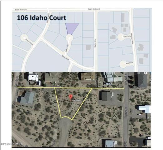 106 Idaho Court, Elephant Butte, NM 87935 (MLS #1900351) :: Steinborn & Associates Real Estate