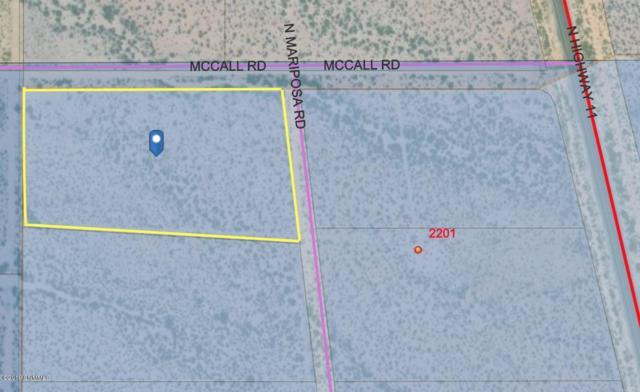 001 Mccall Road, Columbus, NM 88029 (MLS #1900384) :: Steinborn & Associates Real Estate