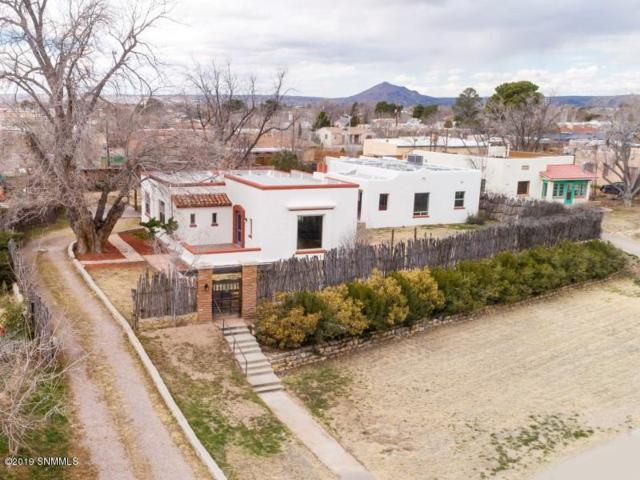 925 Hess Terrace, Las Cruces, NM 88005 (MLS #1900386) :: Steinborn & Associates Real Estate