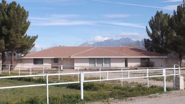 385 Fort Fillmore Road, Mesilla Park, NM 88047 (MLS #1900399) :: Arising Group Real Estate Associates