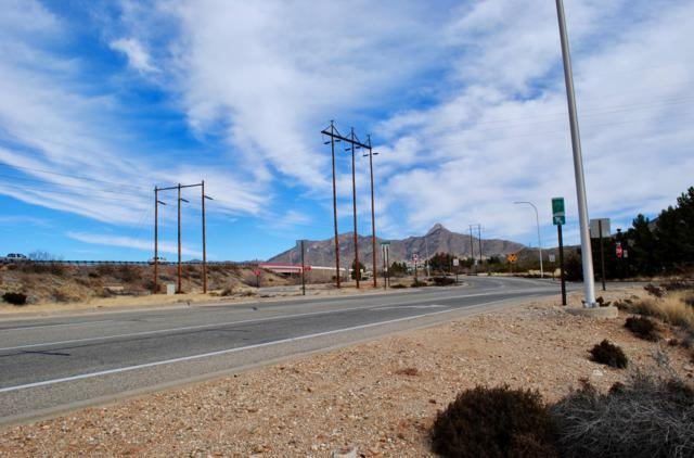 TBD Baylor Canyon Rd, Las Cruces, NM 88011 (MLS #1900446) :: Steinborn & Associates Real Estate