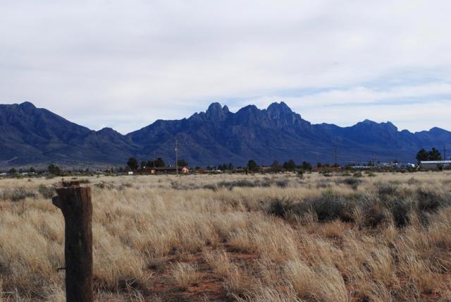 6689 Weisner Road, Las Cruces, NM 88012 (MLS #1900447) :: Steinborn & Associates Real Estate