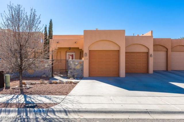 2349 Santo Domingo Avenue, Las Cruces, NM 88011 (MLS #1900459) :: Steinborn & Associates Real Estate