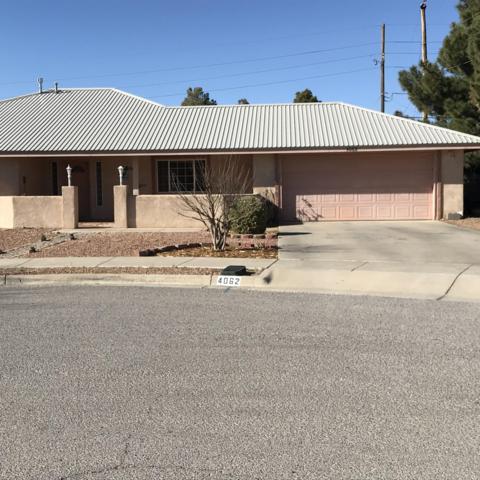 4062 Lilac Dr, Las Cruces, NM 88005 (MLS #1900465) :: Steinborn & Associates Real Estate