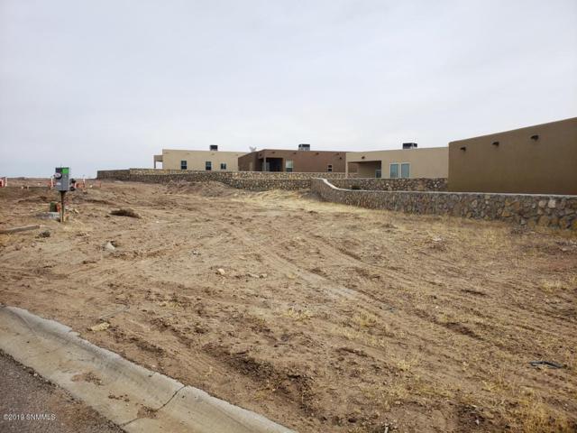 3184 Rio Arriza Loop, Las Cruces, NM 88012 (MLS #1900485) :: Steinborn & Associates Real Estate