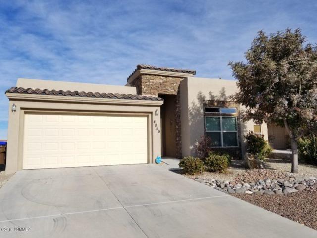 4059 Bella Sierra Court, Las Cruces, NM 88011 (MLS #1900488) :: Steinborn & Associates Real Estate
