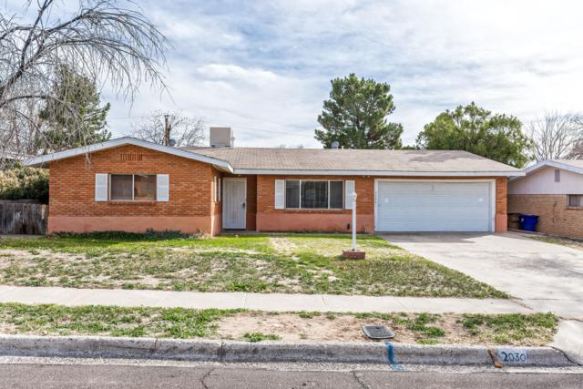 2030 Austin Drive, Las Cruces, NM 88001 (MLS #1900500) :: Steinborn & Associates Real Estate