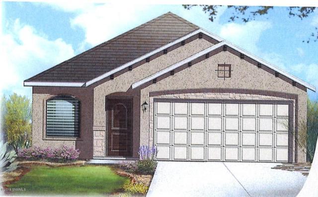 6054 Copper Hill Street, Sunland Park, NM 88063 (MLS #1900501) :: Steinborn & Associates Real Estate