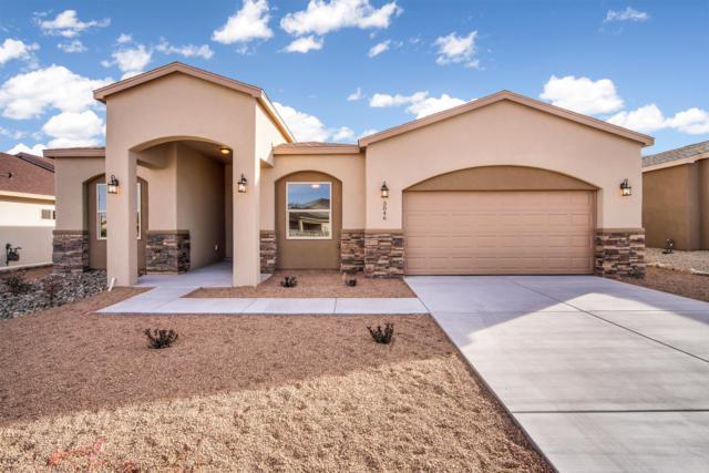 3046 Dos Vistas Avenue, Las Cruces, NM 88012 (MLS #1900518) :: Steinborn & Associates Real Estate