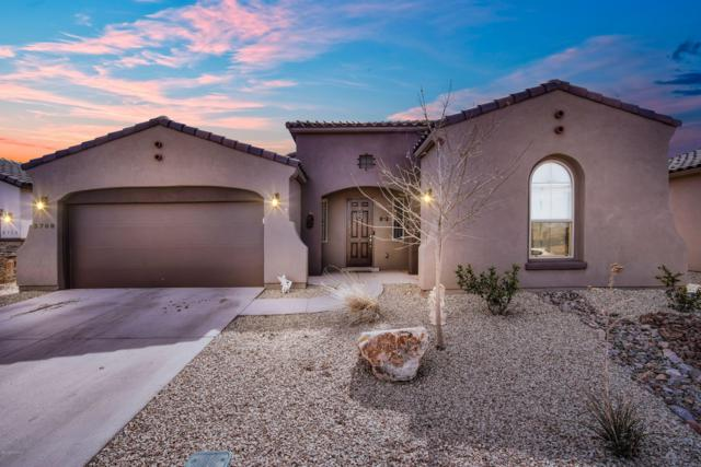 3708 Sienna Avenue, Las Cruces, NM 88012 (MLS #1900527) :: Steinborn & Associates Real Estate