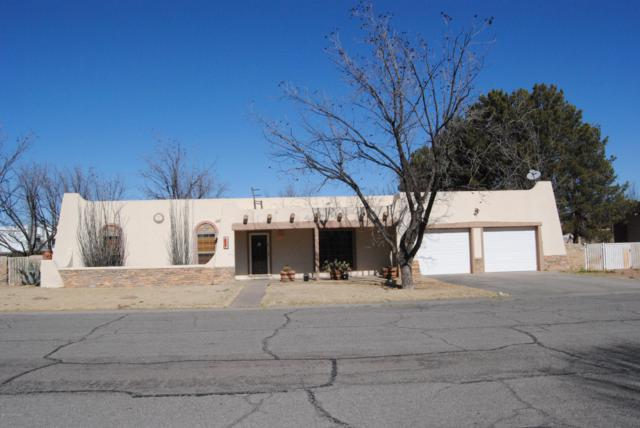 105 Los Nogales Drive, Las Cruces, NM 88001 (MLS #1900532) :: Steinborn & Associates Real Estate