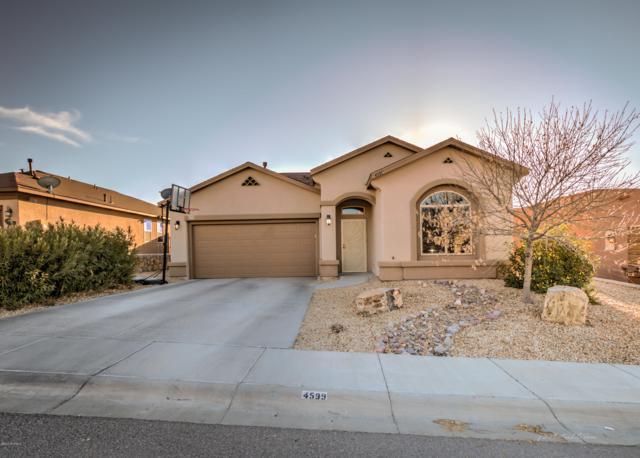 4599 Arabela Drive, Las Cruces, NM 88012 (MLS #1900546) :: Steinborn & Associates Real Estate