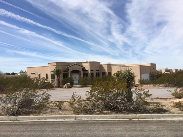 5365 Redman Road, Las Cruces, NM 88011 (MLS #1900560) :: Steinborn & Associates Real Estate