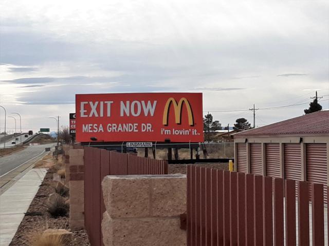 5295 Bataan Memorial, Las Cruces, NM 88012 (MLS #1900597) :: Steinborn & Associates Real Estate