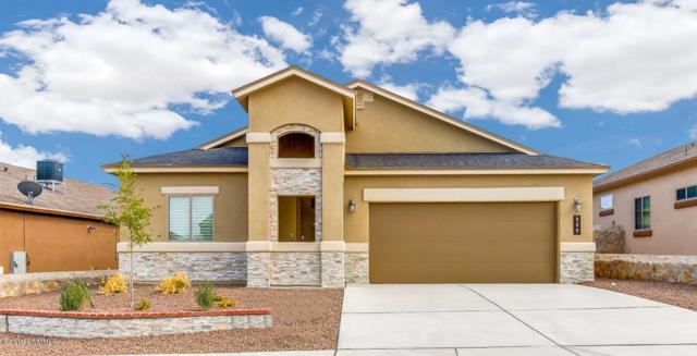 869 Bronze Hill Avenue, Sunland Park, NM 88063 (MLS #1900600) :: Steinborn & Associates Real Estate