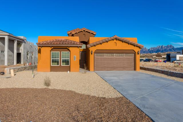 2908 Bink Place, Las Cruces, NM 88011 (MLS #1900615) :: Arising Group Real Estate Associates