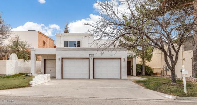 125 Feathermoon Drive, Santa Teresa, NM 88008 (MLS #1900626) :: Steinborn & Associates Real Estate