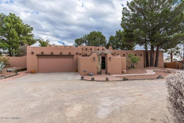 4870 Quail Run Avenue, Las Cruces, NM 88011 (MLS #1900633) :: Steinborn & Associates Real Estate