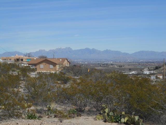 495 S Weinrich Road, Las Cruces, NM 88007 (MLS #1900639) :: Better Homes and Gardens Real Estate - Steinborn & Associates