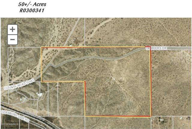 TBD De Beers Drive, Radium Springs, NM 88054 (MLS #1900641) :: Arising Group Real Estate Associates