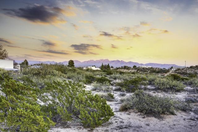 0000 Purple Mountain Avenue, Las Cruces, NM 88007 (MLS #1900646) :: Arising Group Real Estate Associates