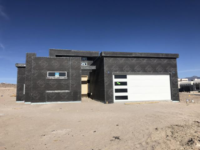 2910 Pacifico Court, Las Cruces, NM 88011 (MLS #1900665) :: Arising Group Real Estate Associates