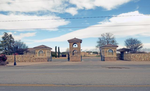 1985 Tapestry Circle, Las Cruces, NM 88005 (MLS #1900668) :: Steinborn & Associates Real Estate
