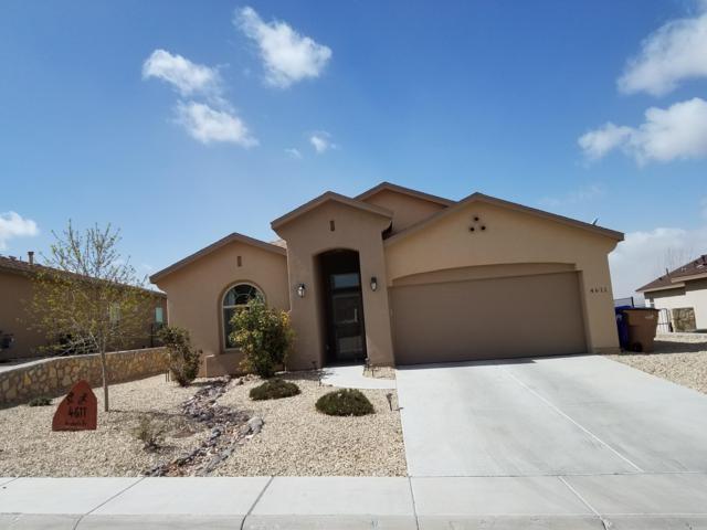 4611 Arabela Drive, Las Cruces, NM 88012 (MLS #1900678) :: Steinborn & Associates Real Estate