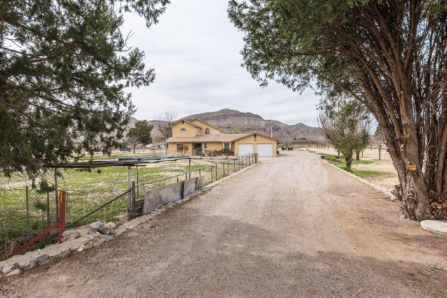 10225 Dona Ana Rd Road, Las Cruces, NM 88007 (MLS #1900712) :: Steinborn & Associates Real Estate