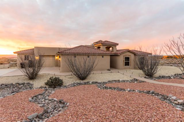 4860 Cripple Creek Road, Las Cruces, NM 88011 (MLS #1900719) :: Steinborn & Associates Real Estate