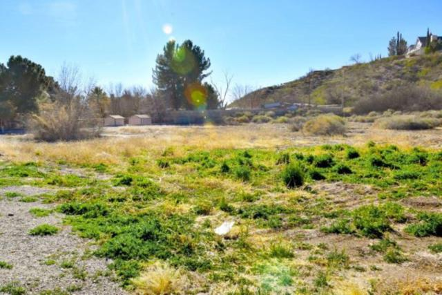 Lot 10E Jamie Drive, Las Cruces, NM 88005 (MLS #1900734) :: Steinborn & Associates Real Estate