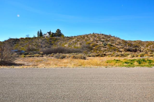 Lot 10F Jamie Drive, Las Cruces, NM 88005 (MLS #1900736) :: Steinborn & Associates Real Estate