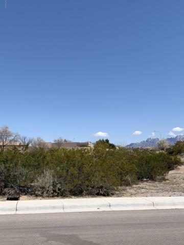 4032 Nemesh Drive, Las Cruces, NM 88005 (MLS #1900737) :: Steinborn & Associates Real Estate