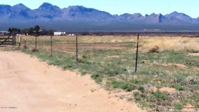 000 Osos Del Sol Road, Las Cruces, NM 88012 (MLS #1900758) :: Steinborn & Associates Real Estate