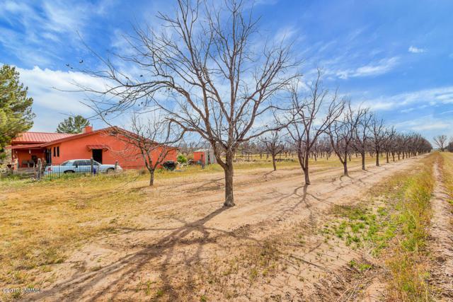 379 Hayride Road, Las Cruces, NM 88007 (MLS #1900762) :: Arising Group Real Estate Associates