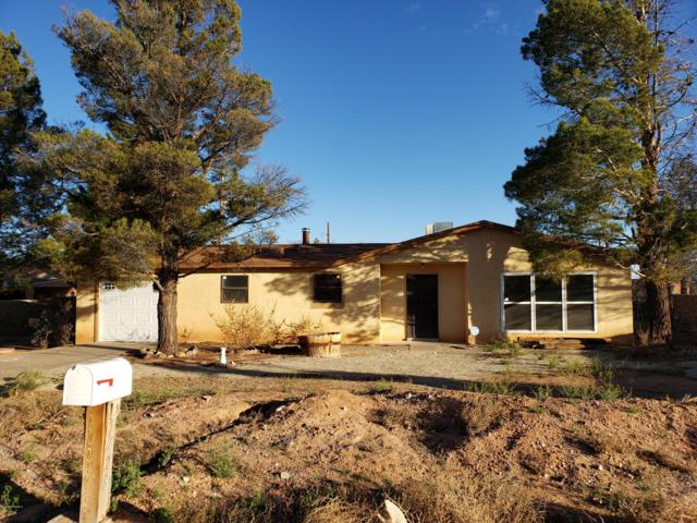 7228 Village Drive, Las Cruces, NM 88012 (MLS #1900764) :: Steinborn & Associates Real Estate