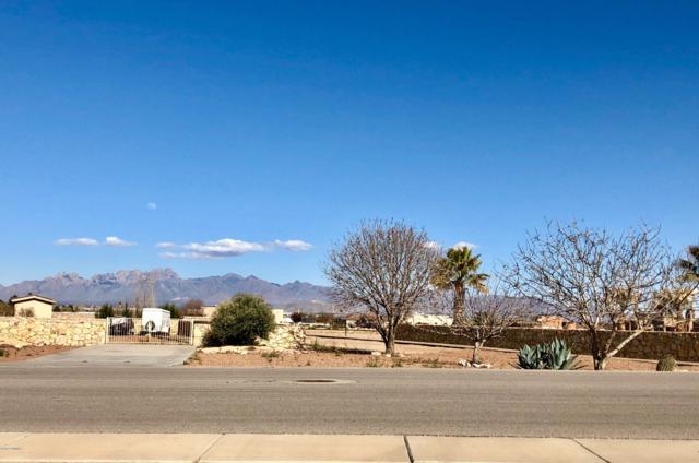 800 Sandy Beach Road, Las Cruces, NM 88005 (MLS #1900775) :: Steinborn & Associates Real Estate