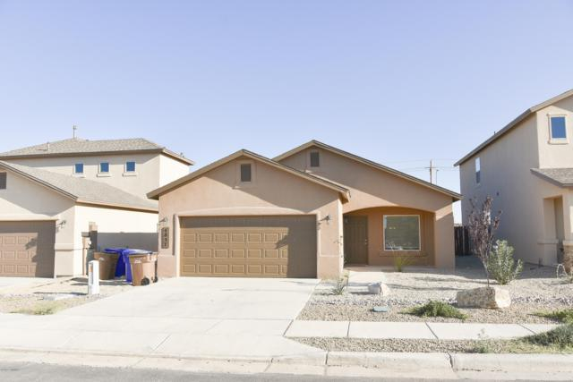 4857 Califa Avenue, Las Cruces, NM 88012 (MLS #1900778) :: Steinborn & Associates Real Estate