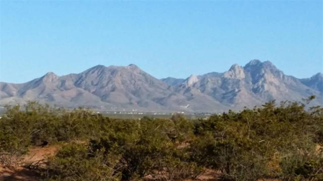 0 Leebarry Lane, Las Cruces, NM 88012 (MLS #1900789) :: Arising Group Real Estate Associates