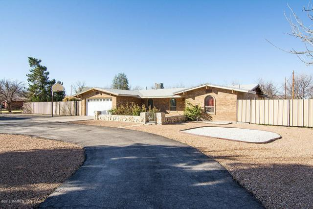 4843 Grider Road, Las Cruces, NM 88007 (MLS #1900796) :: Steinborn & Associates Real Estate