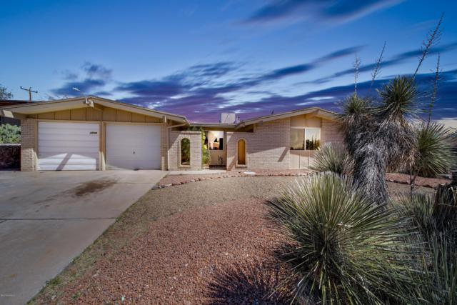 2714 Crestview Drive, Las Cruces, NM 88011 (MLS #1900801) :: Steinborn & Associates Real Estate